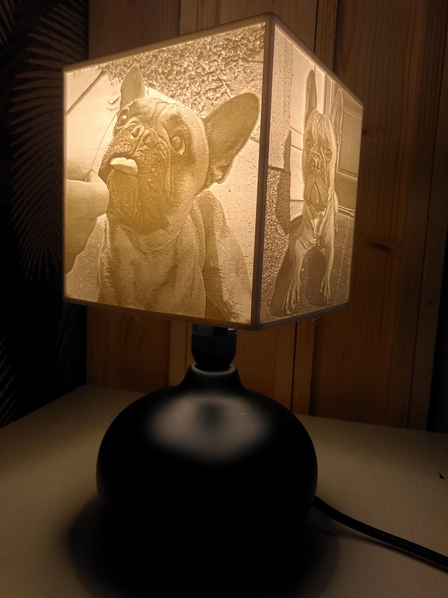 Egyedi fényképes lámpa - Kedvenc kisállatok